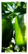 Green Peppers Beach Towel