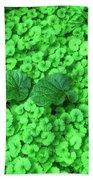 Green Plants Beach Towel
