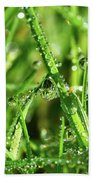 Green Rain Beach Towel