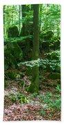 Green Stony Forest In Vogelsberg Beach Towel