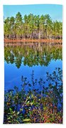 Green Swamp In December Beach Towel
