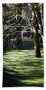 Green Swamp Near Camps Canal Beach Towel