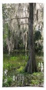 Green Swamp Beach Towel