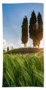 Green Tuscany Beach Sheet