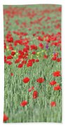 Green Wheat And Red Poppy Flowers Field Beach Towel