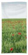 Green Wheat Field Spring Scene Beach Towel