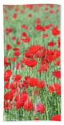 Green Wheat With Poppy Flowers Beach Towel