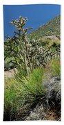 Greening Of The High Desert Beach Towel