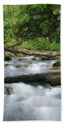 Greer Spring Branch 1 Beach Towel