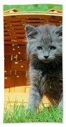 Grey Fluffy Kitten In Market Basket Beach Towel