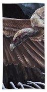 Griffon Vulture Beach Towel