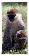 Grivet Monkey At Lake Awassa Beach Towel