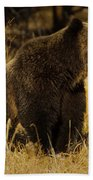 Grizzly Bear-signed-#6672 Beach Towel