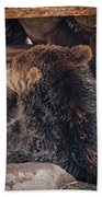 Grizzly Bear Under The Cabin Beach Towel