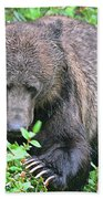 Grizzly Claws Beach Towel
