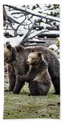 Grizzly Cub Holding Mother Beach Towel by Scott Read