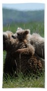 Grizzly  Mother And A Cub In Katmai National Park Beach Towel