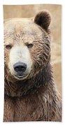 Grizzly Portrait Beach Towel