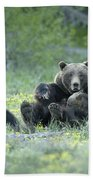 Grizzly Romp - Grand Teton Beach Towel by Sandra Bronstein