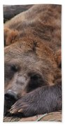 Grizzly's Naptime Beach Towel