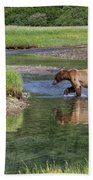 Grizzy Bear Crossing The River Beach Towel