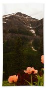 Grounds At Lake Louise Beach Towel