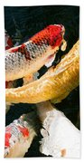 Group Of Koi Fish Beach Towel