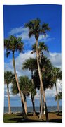 Group Of Palms Beach Towel