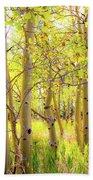 Grove Of Aspens On An Autumn Day Beach Towel