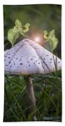 Growing Mushrooms Beach Sheet