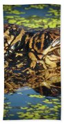 Growing Up Gator, No. 33 Beach Towel