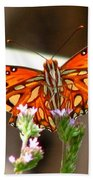 Gulf Fritillary 2 Beach Sheet