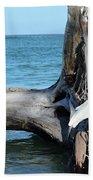 Gulf Shallows Beach Sheet