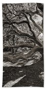 Gumbo Limbo Beach Towel