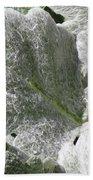 Hairy Leaf Beach Towel