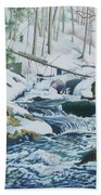 Hamburg Mountain Stream Beach Towel