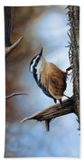 Hangin Out - Nuthatch Beach Towel
