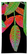 Hanging Green And Red Leafs... Beach Towel