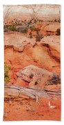 Hanging On The Cliff At Kodachrome Basin State Park Beach Towel
