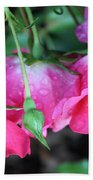 Hanging Roses Beach Towel