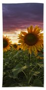 Happiness Is A Field Of Sunflowers Beach Towel