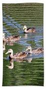 Happy Ducks On The Pond Beach Towel