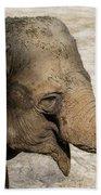 Happy Elephant Beach Towel