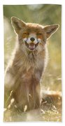Happy Fox Is Happy Beach Towel