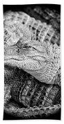 Happy Gator Black And White Beach Towel