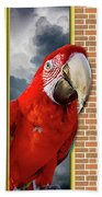 Happy Red Parrot Beach Towel