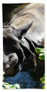 Happy Rhino Beach Towel