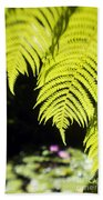 Hapuu Ferns Beach Towel