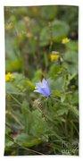 Harebell - Campanula Rotundifolia - Flower Beach Towel