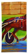Harness Racing At Bluebonnets Beach Towel